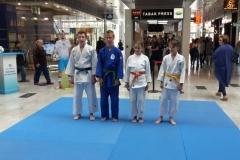 2017_Judo-Aupark-3