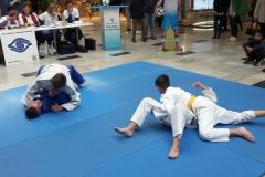2017_Judo-Aupark-4